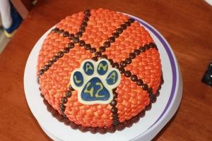 Lion paw basketball cake