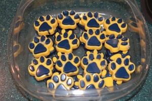 Lion paws in yellow and blue