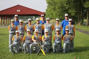 2014 12U GVAA Walkersville Lions All Star Team