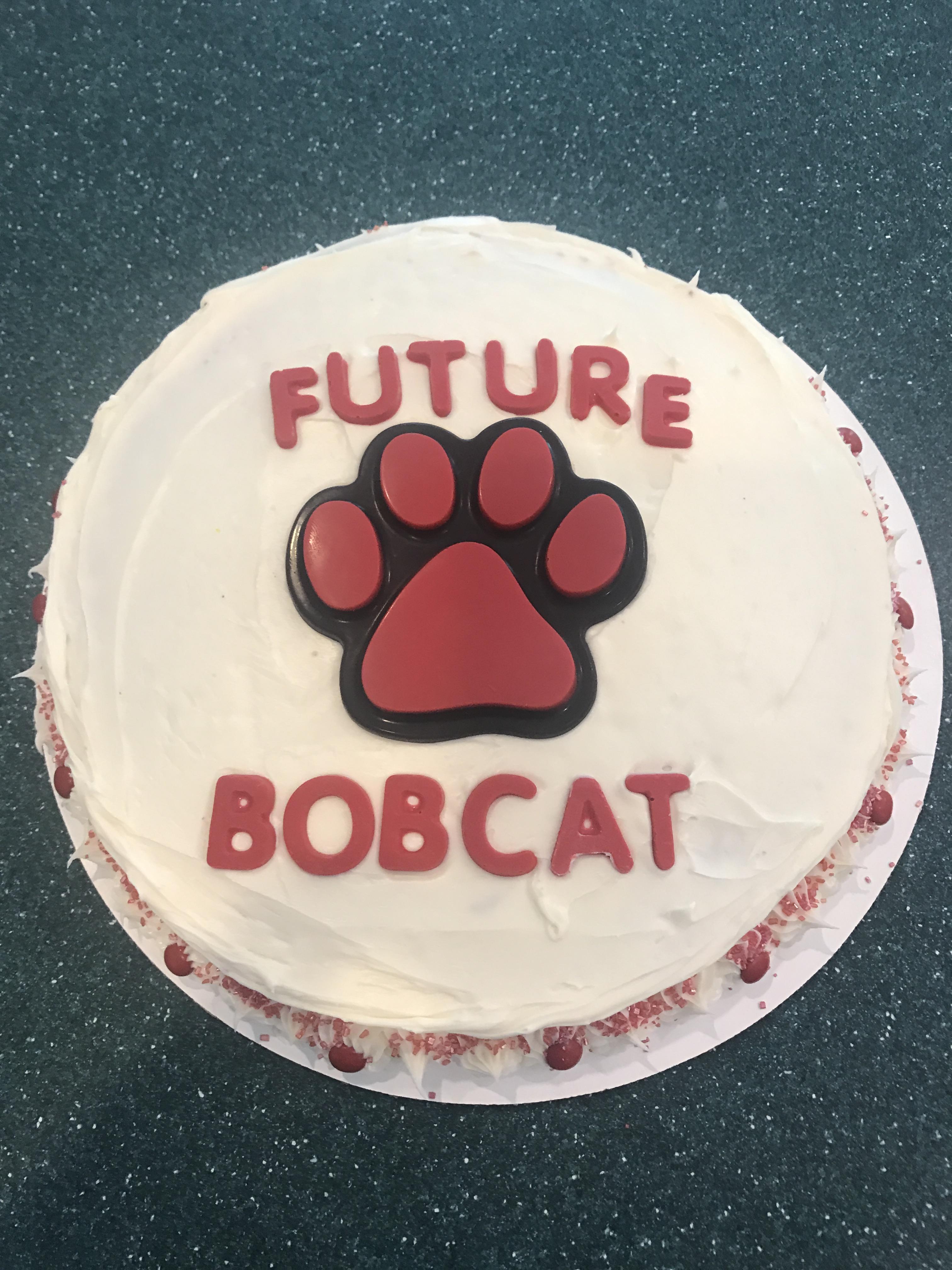 Future Bobcat Cake Sweet Sweet Muffins